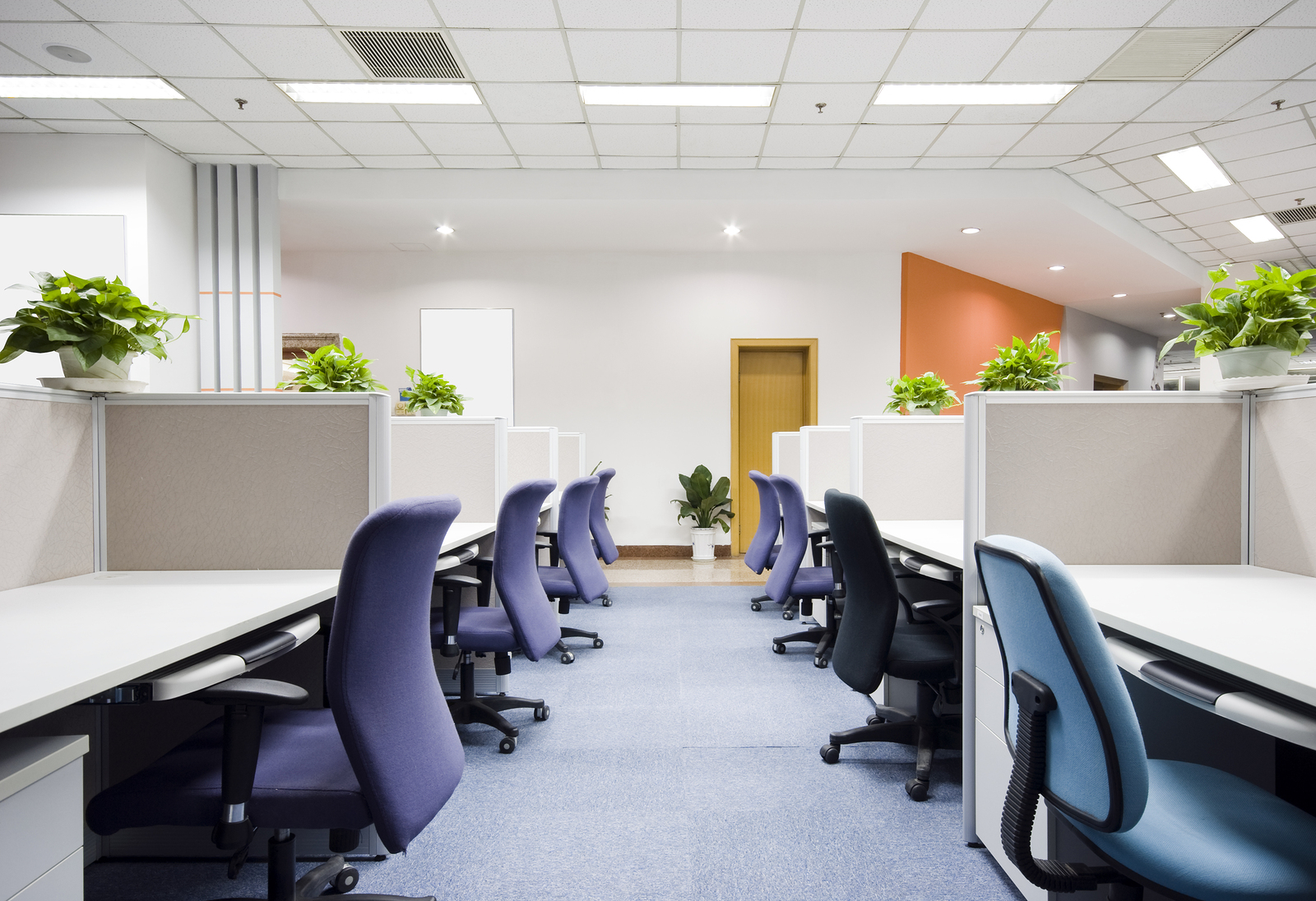green cleaning results in a modern office with desk and chairs and green plants